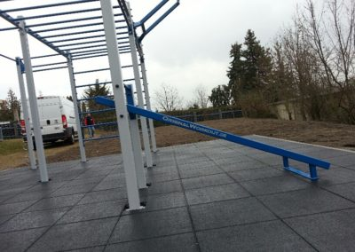5. OriginalWorkout Outdoor Custom Cage Weimar Fitness