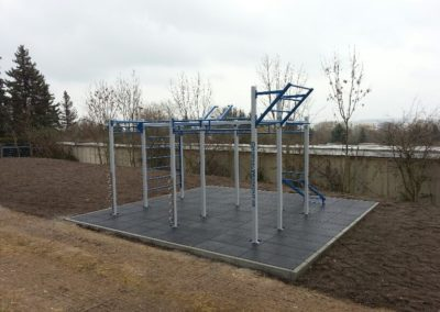 6. OriginalWorkout Outdoor Custom Cage Weimar Fitness